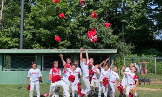 Two Melrose Little League All-Star teams win District Championships