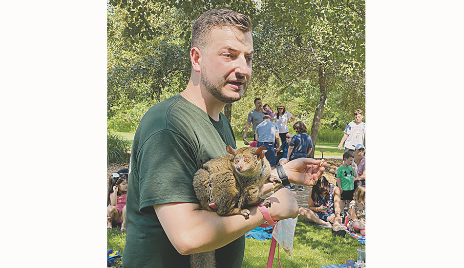 Animal Adventures of Bolton delights young readers